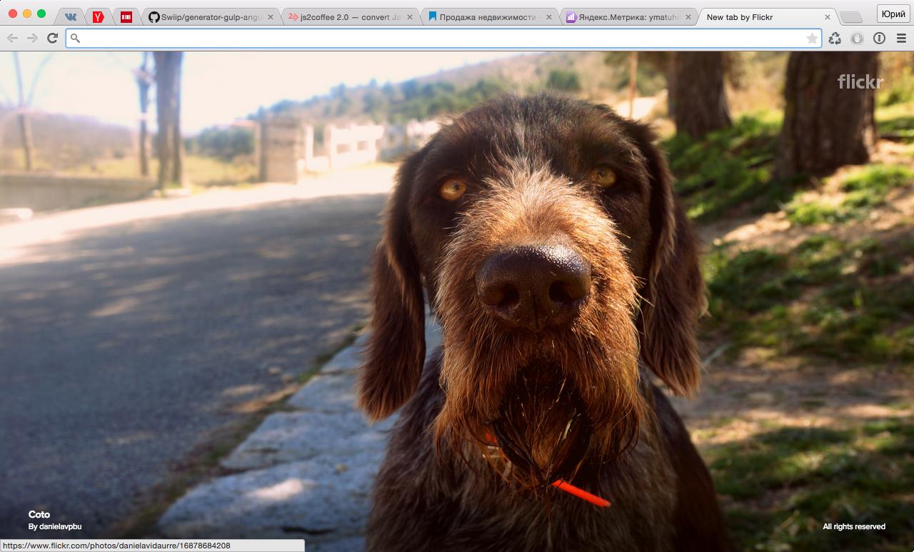 Добавляем красоты внаш Google Chrome срасширением Flickr Tab